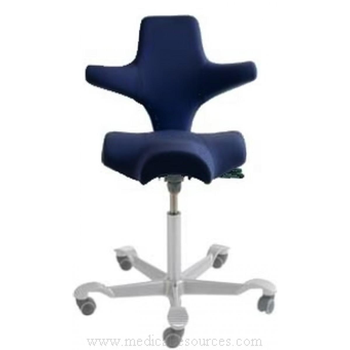 HAG Capisco Saddle Seat with Back Grade 3 Vinyl Seat Height Range16 -21   sc 1 st  Medical Resources & hag_capisco_ergonomic_sonographer_chair islam-shia.org